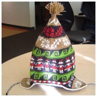 Stacey's Peru Hat